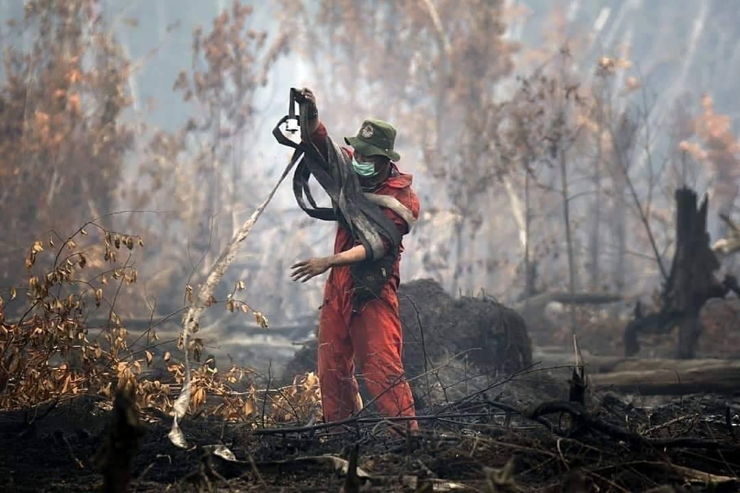 Apresiasi Manggala Agni dll, Presiden Jokowi: Sepekan Terakhir Karhutla Berkurang