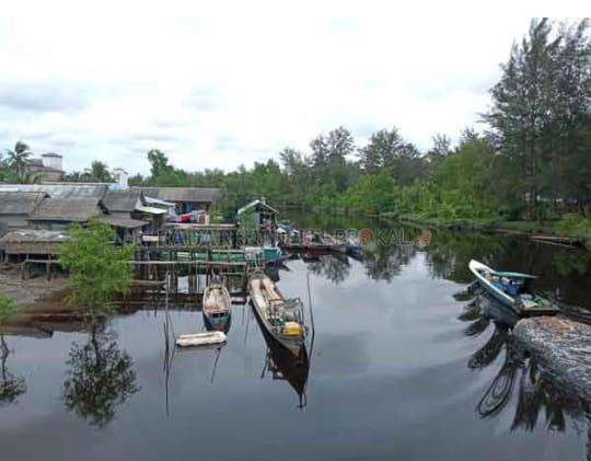 Perikanan : Nelayan Sungai Bakau Butuh Pemberdyaan