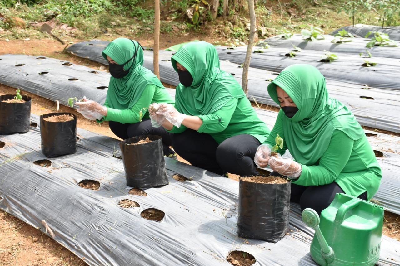 Persit Kartika Chandra Kirana, Tanam Sayur Mayur