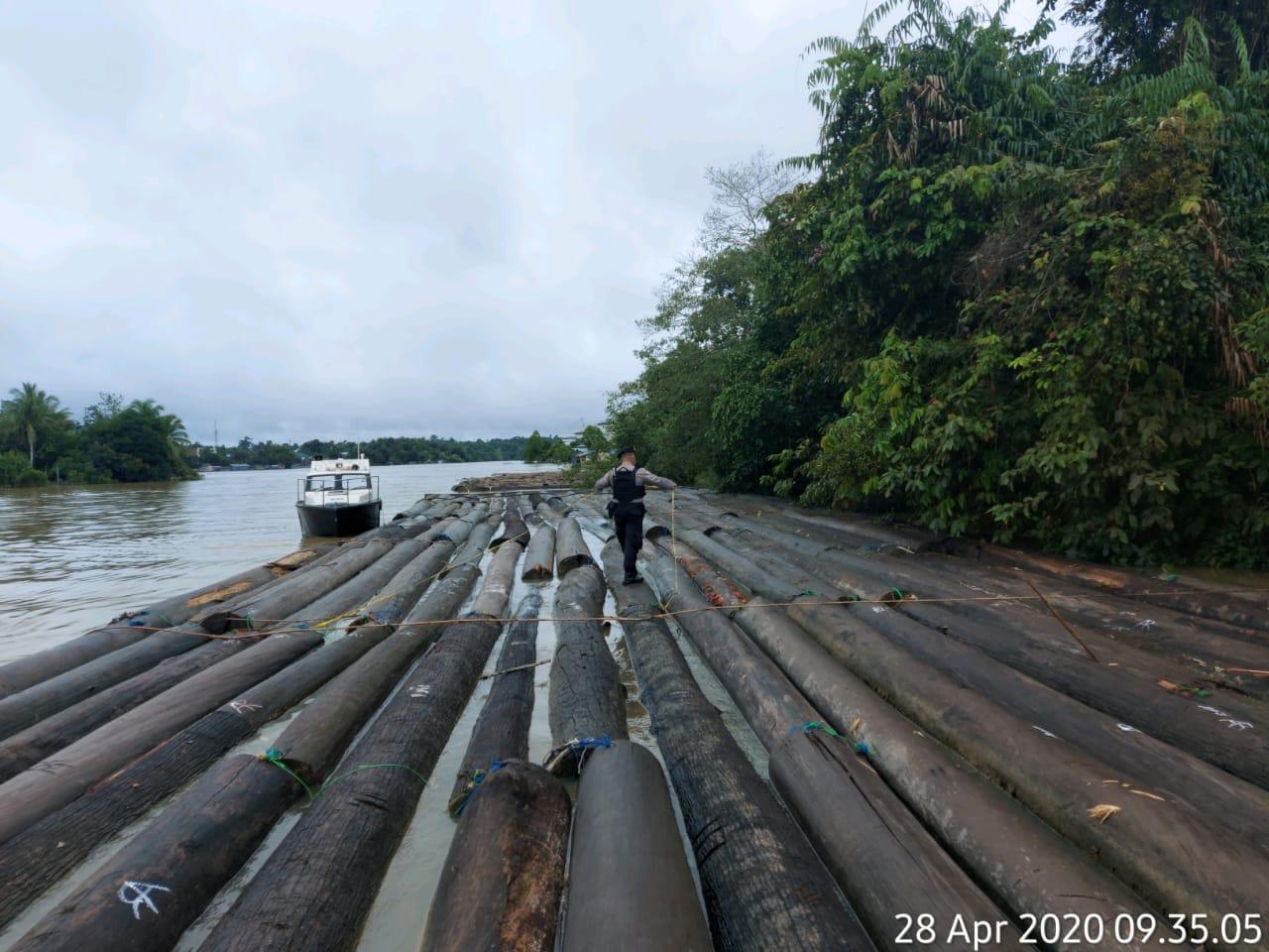 Satreskrim Polres Barito Utara MenDor Pelaku Terduga Ilegal Loging.