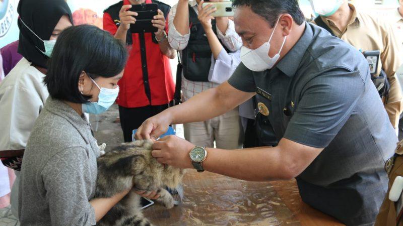 World Rabies Day 2021. Ini Kata Wakil Gubernur Kalteng